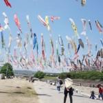 今日はこどもの日 高槻市こいのぼりフェスタ1000に行ってきました。